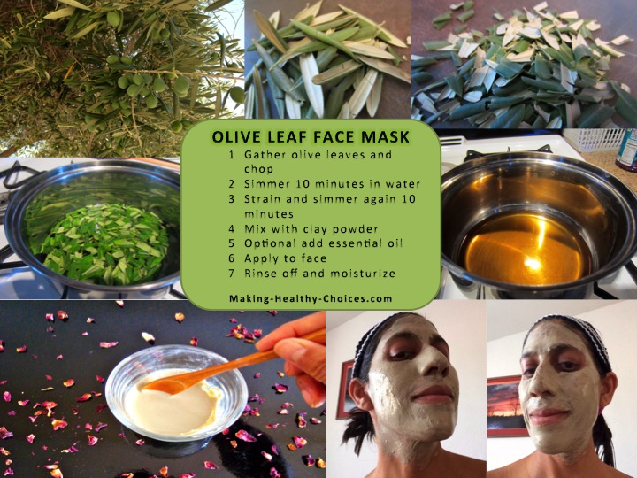 Olive Leaf Face Mask