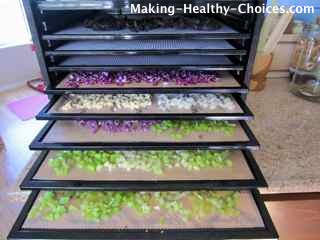 Vegetables in Dehydrator
