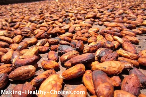 Cacao Beans drying in the Sun