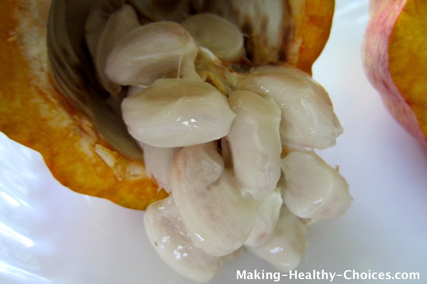 Cacao Pod with Pulp