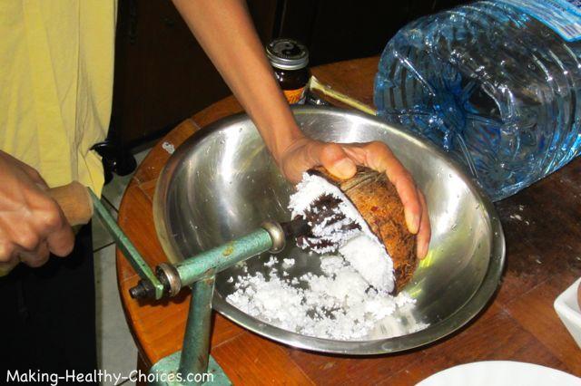 Coconut Meat Shredding Tool