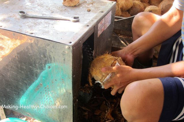 Coconut Removing Hard Shell